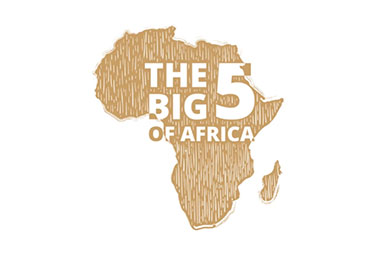 the bif 5 of africa enamel collection